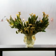 ヒオウギのお花