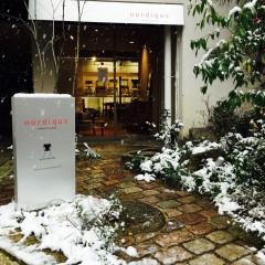 雪降りし京都☃
